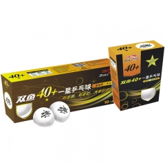 Premium 1 Star Table Tennis Ball