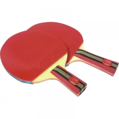 Double Fish Lower Price Raft Pong Racket